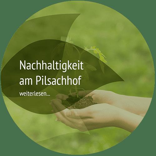 nachhaltig reisen in Österreich Pension Pilsachhof Kärnten