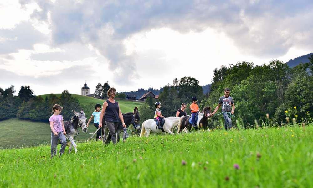 pilsachhof-arriach-kaernten (39)