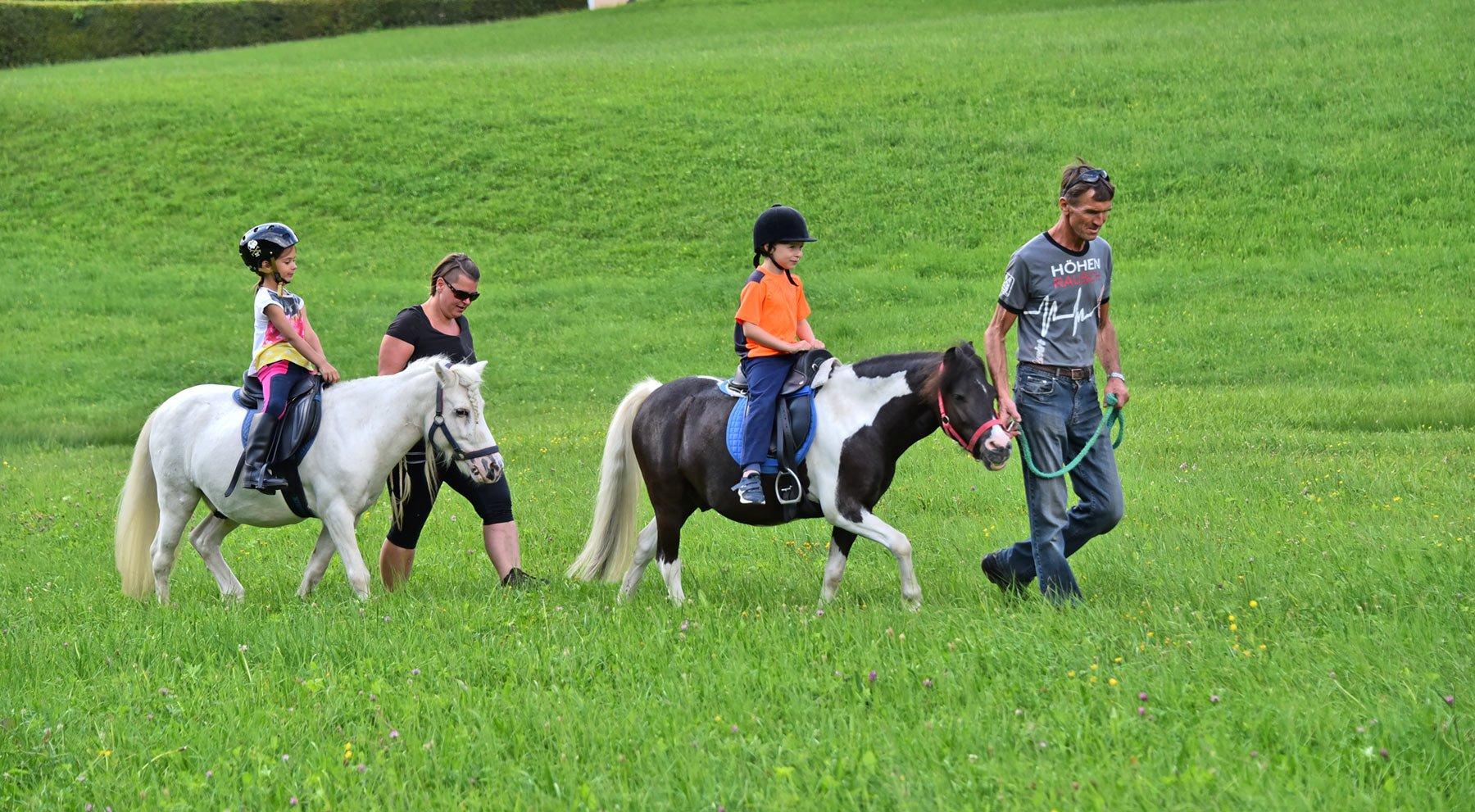 Die Ponys Jakob & Felix am Bauernhof