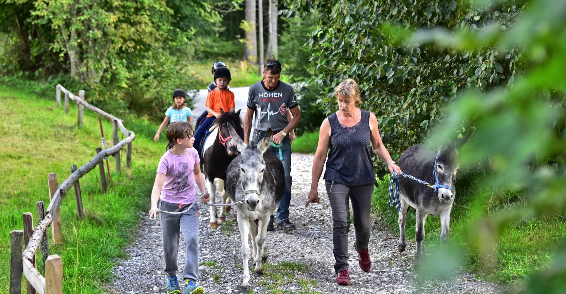 Familienurlaub mit Pferden und Tieren in Kärnten am Pilsachhof Region Villach - Gerlitzen - Ossiacher See in Arriach